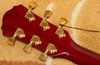 Jack and Danny Brothers LC300 Electric guitar